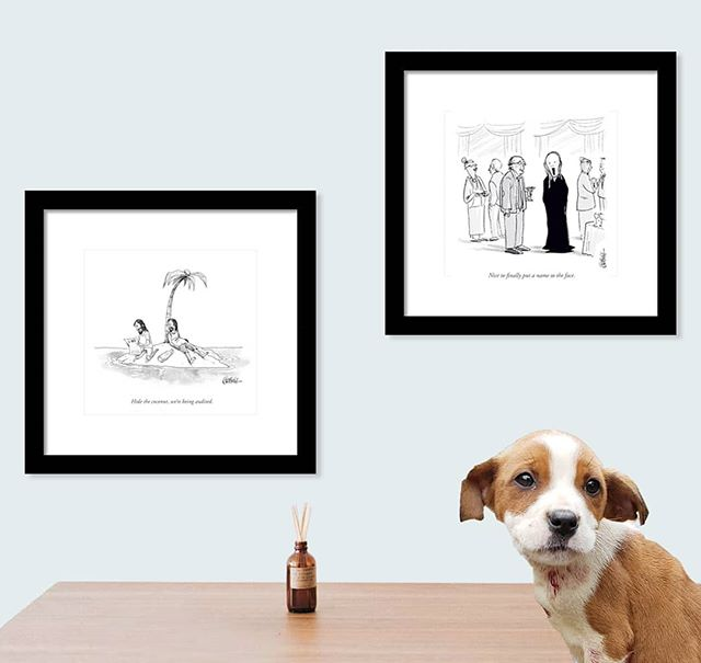 This weekend only:  50% of all cartoon print sales will be donated to the ASPCA. jasonchatfieldstore.com . #ASPCA #dogs #cats #rescue #rescuedog #rescuecat