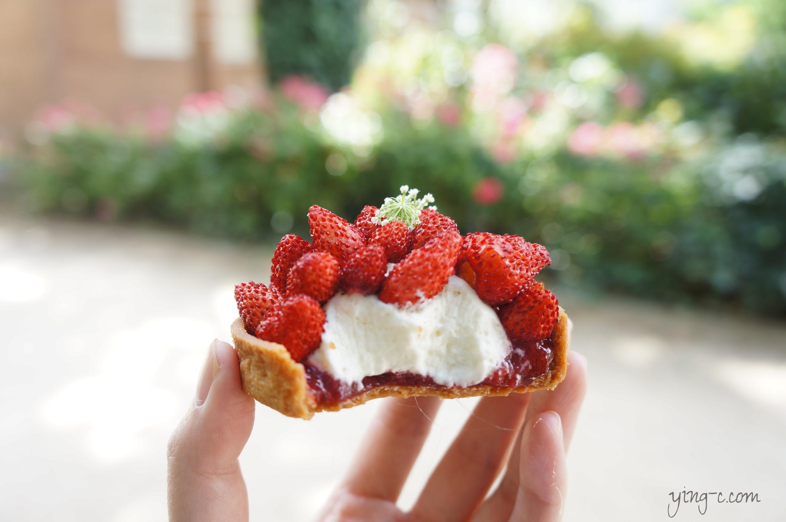 圖1: Des Gâteaux et du Pain  的甜點「Fragaria Vesca」(野莓)。簡單的一個野莓塔,也有塔皮、糖煮野莓、繡線菊奶醬、新鮮野莓與接骨木花等五種組成。(攝影:Ying Chen)