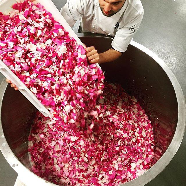 La Fabrique Givrée的原物料大部分來自中央廚房所在地Ardèche附近的農莊。圖中即為將該地所產的有機玫瑰冷泡於牛奶中,準備製作季節新品。(Photo Credit:  La Fabrique Givrée )