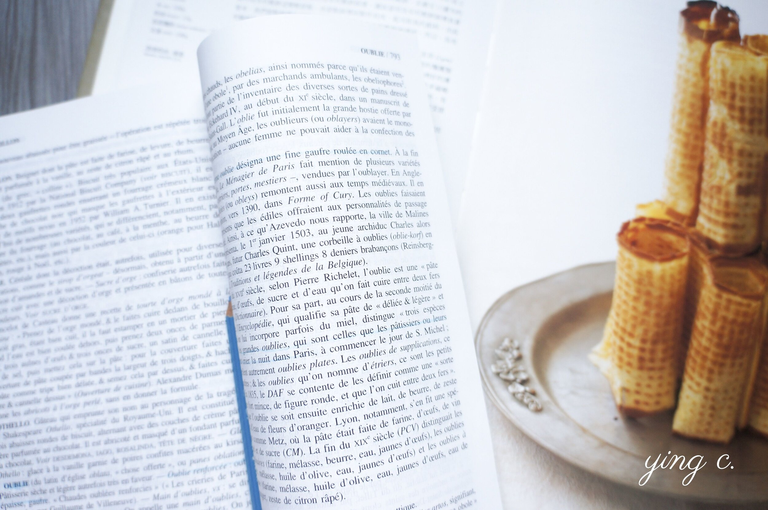 書中甚至有我在歷史文獻中讀到、標誌著甜點師(pâtissier)行業起源的烏布利鬆餅(Oublie)。