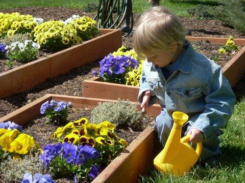 Children water flowers in the multiple gardens.