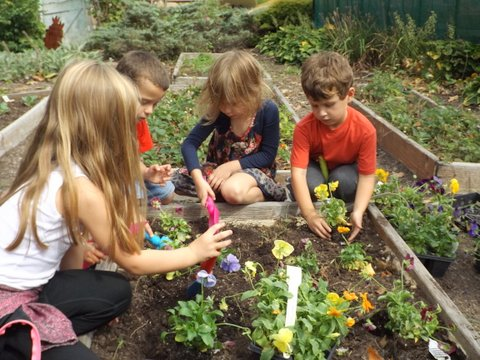 Children Planting Flowers in one of Rainbow Academy's gardens.JPG