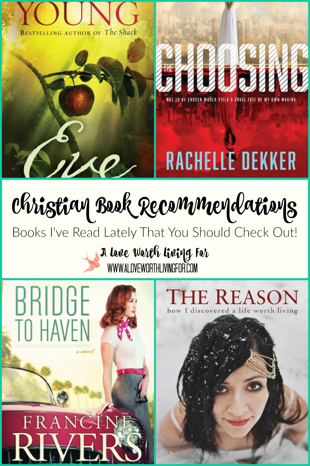Here is a list of some great and newer Christian books that I have read lately & think you'll love! Christian Book Recommendations!