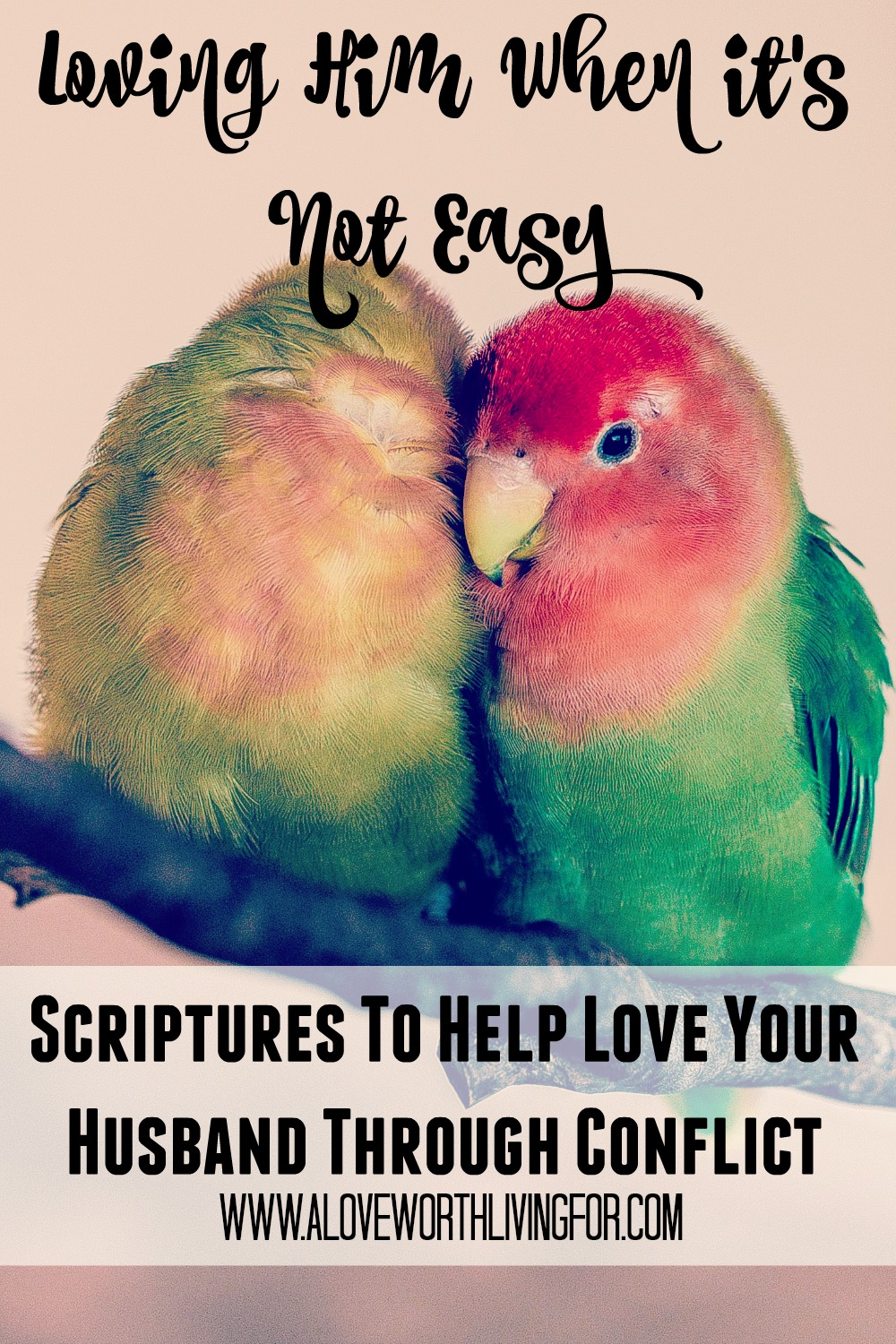 We all want marriages that are happy, healthy and that bring glory to God. We love our spouses but sometimes it is very difficult. These scriptures will help you love him even in his unloveable moments.
