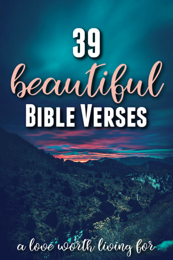 Verses women scripture for What Does