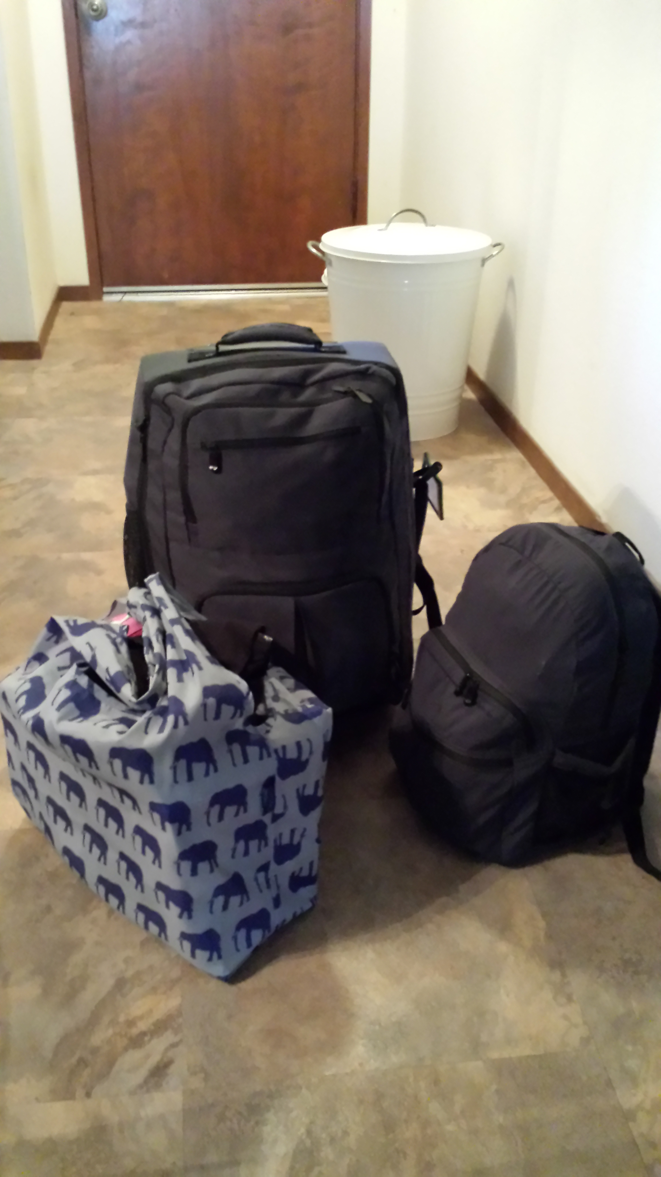 My bags are packed, I'm ready to go. One month with Rick Steve's luggage. The elephant bag will fold back up and be stowed away once my Trek bike ride is done.