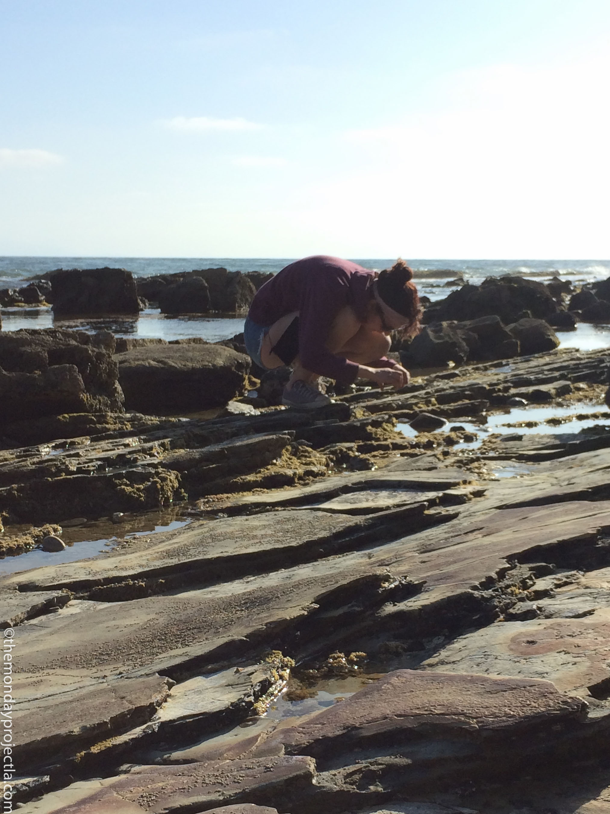 Hill looking for tide pool life