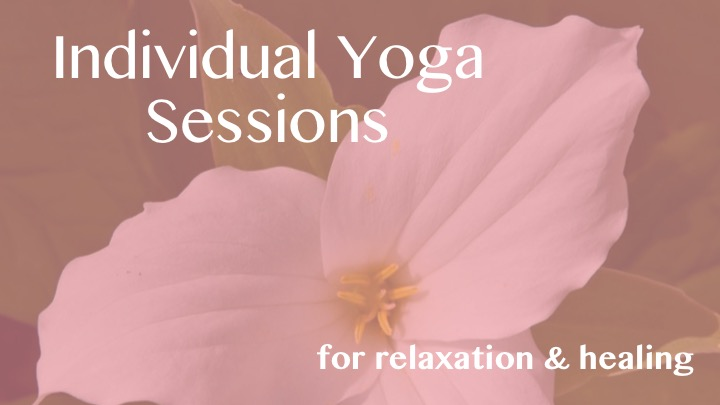 Individual Sessions Image.jpg
