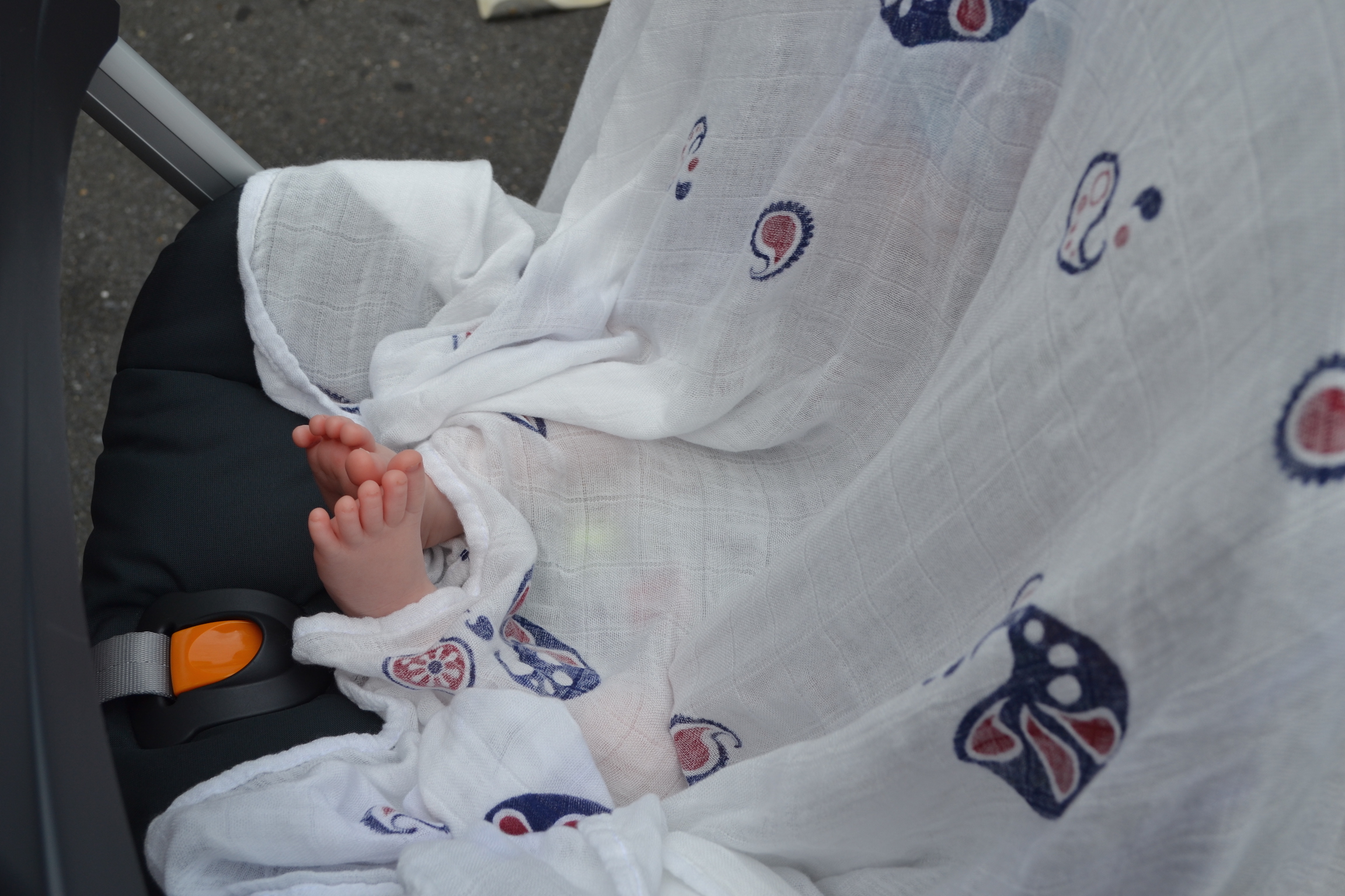 So much awww for the little toes of this5 week old enjoying the market (ok, sleeping through the market).