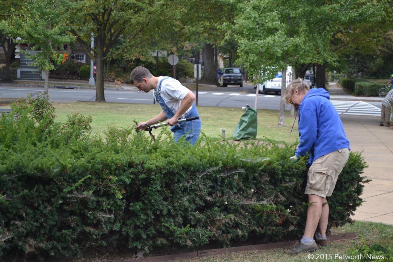 Brad Erdman and Carol cleaning up the bushes.