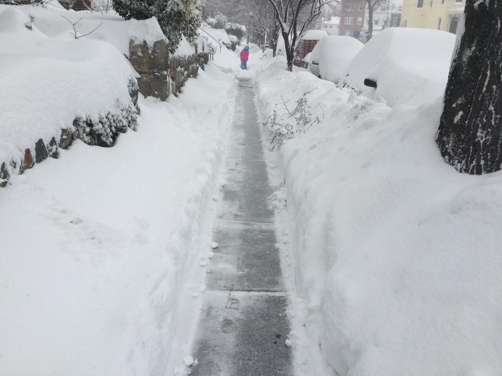 The seemingly never-ending struggle for a clean sidewalk  (photo: Carol Herwig) .