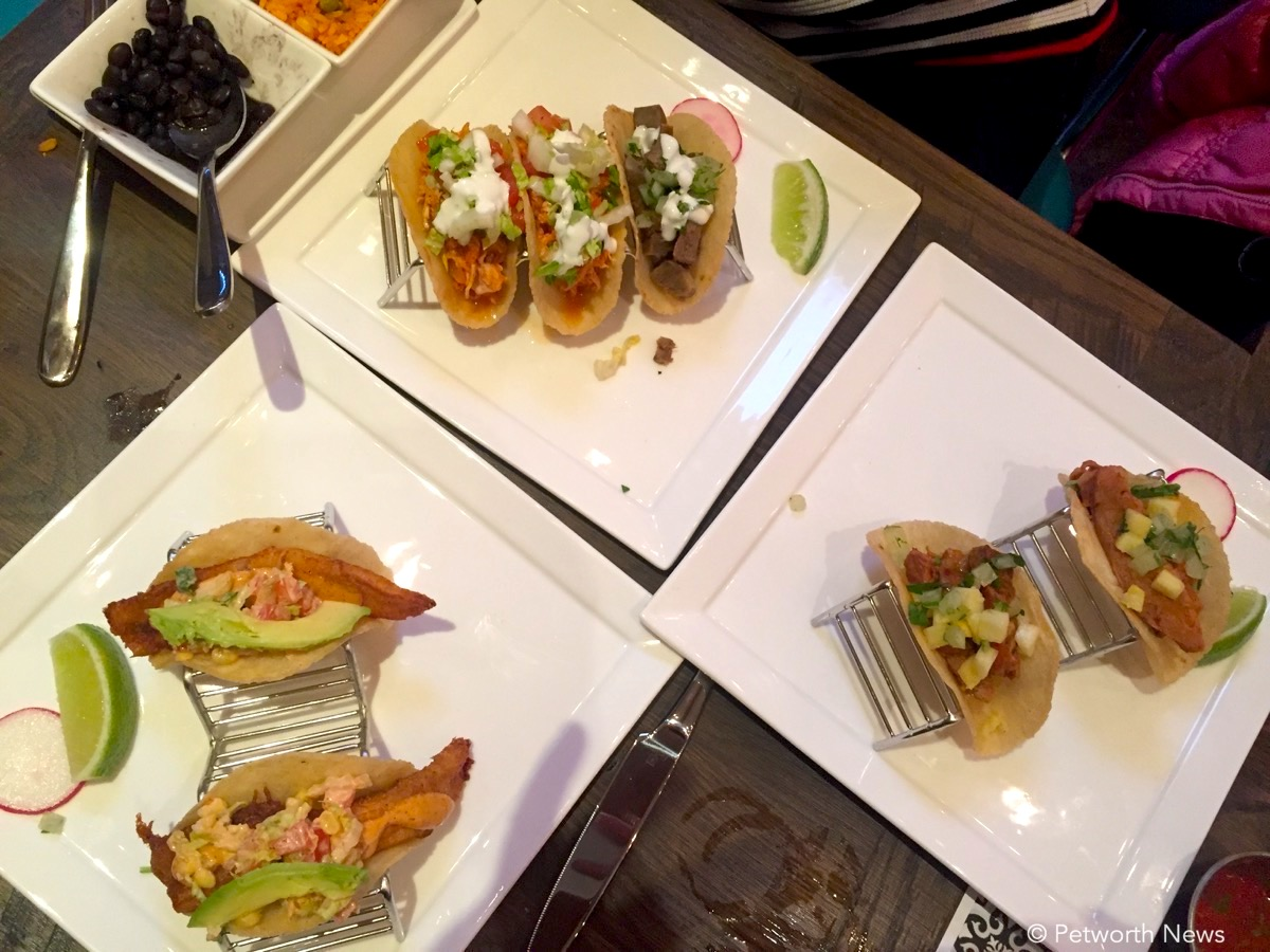 A delicious collection of tacos