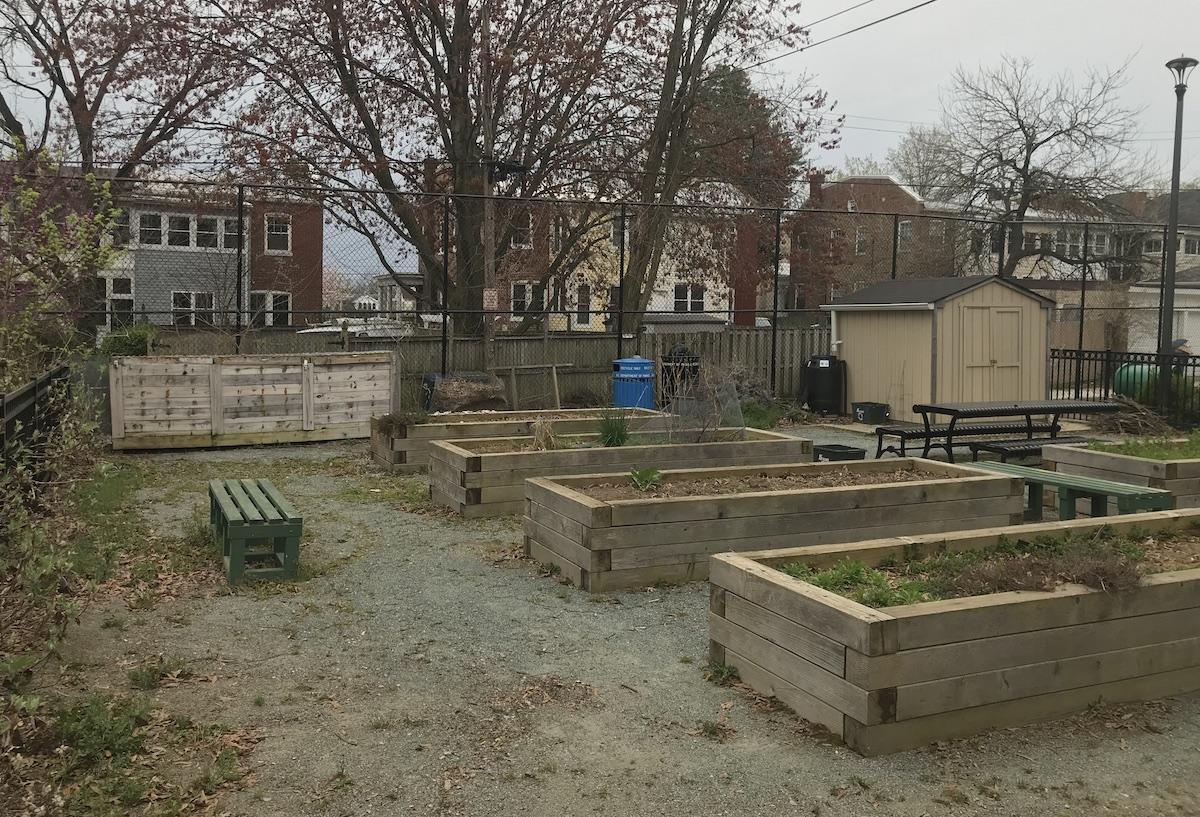 Hamilton Street Compost Garden