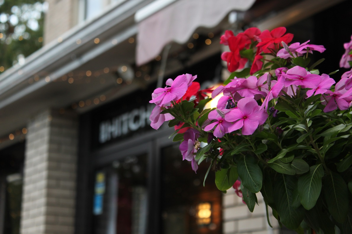 Potted Vinca at the Hitching Post restaurant.