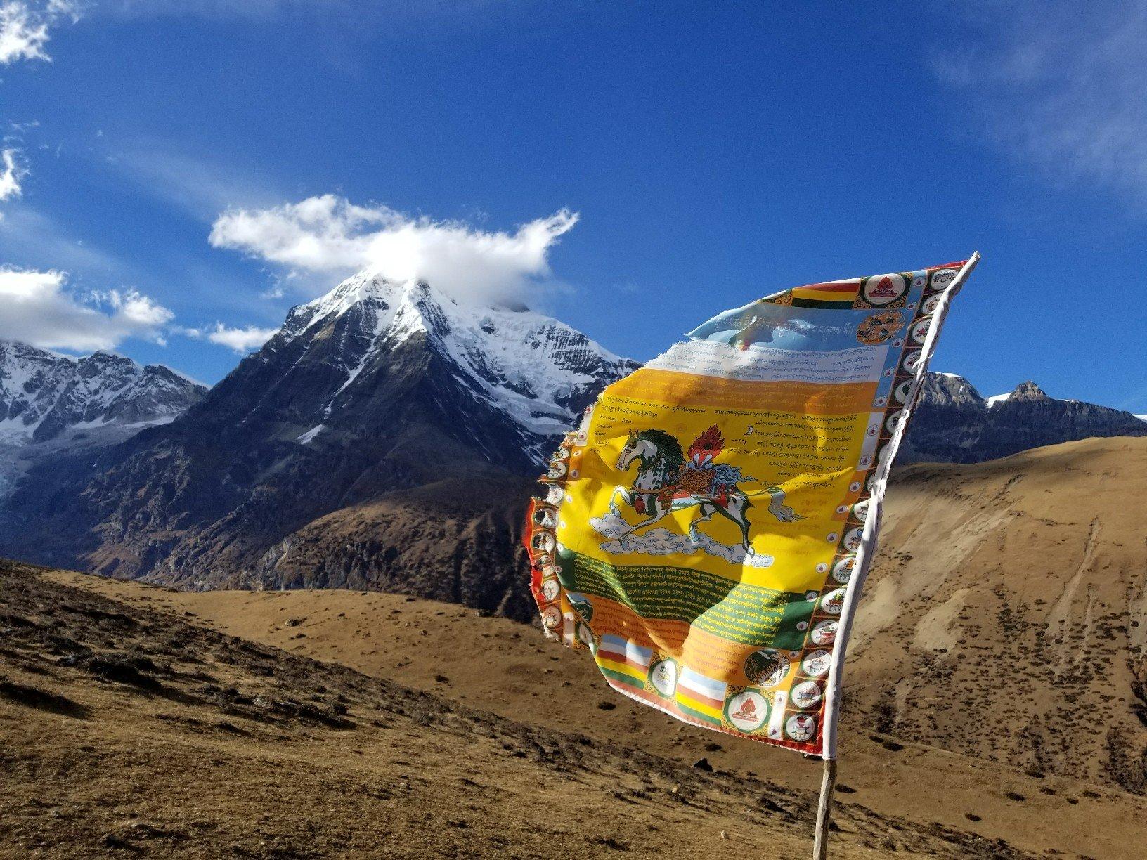 Bhutan near Yeli La Pass 2.jpg