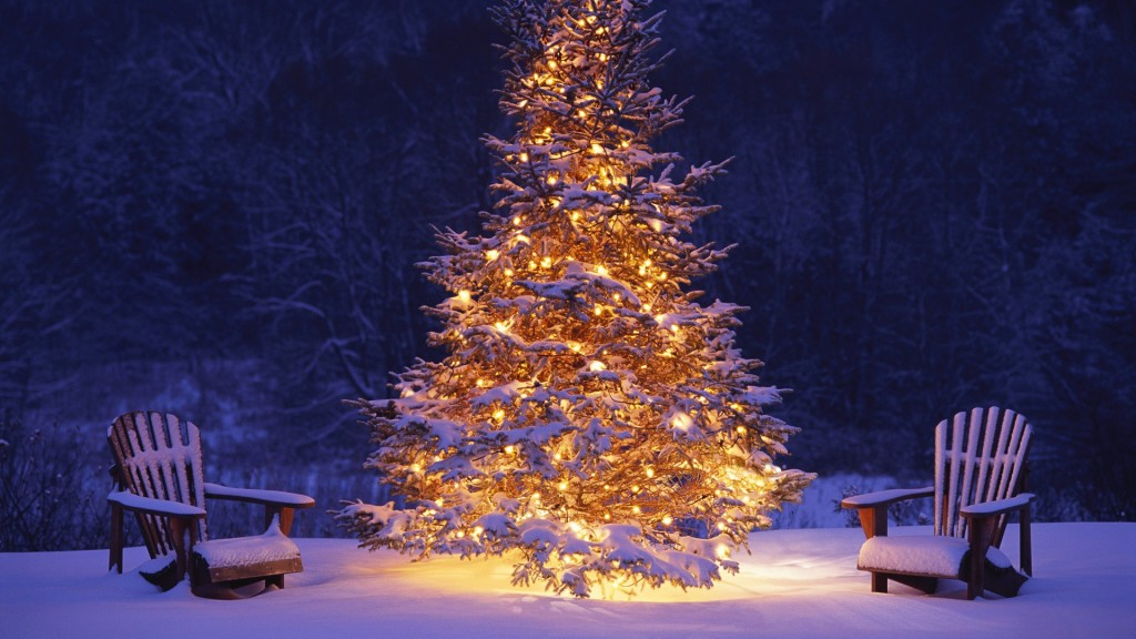beautiful-outdoor-christmas-tree-wallpaper-1.jpg
