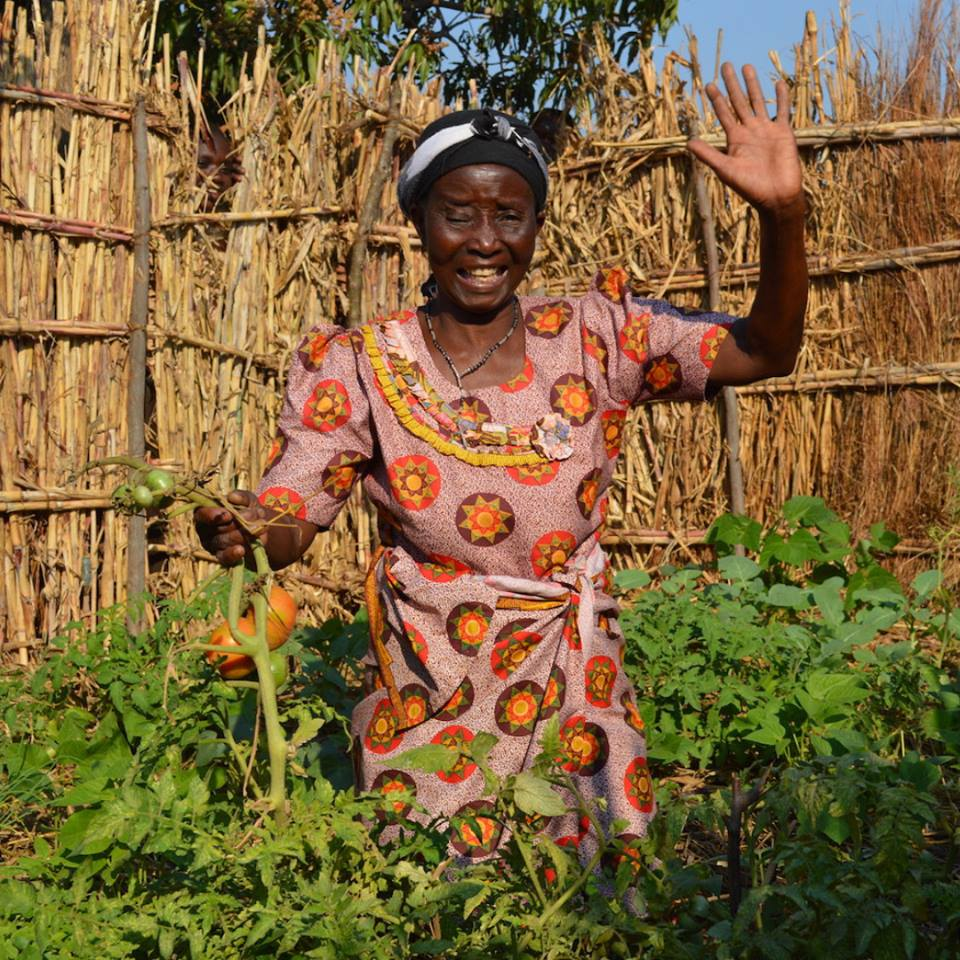 Rosebey Benga in her Victory Garden — August 2018, Phalombe, Malawi