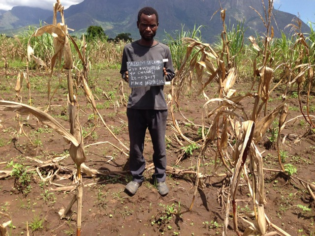 Cassim Seleman_Ruined maize field 3.31.19.jpg