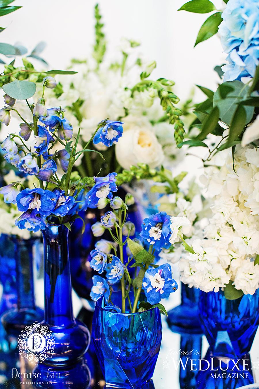 Blue_DeniseLinPhotography-46 copy.jpg