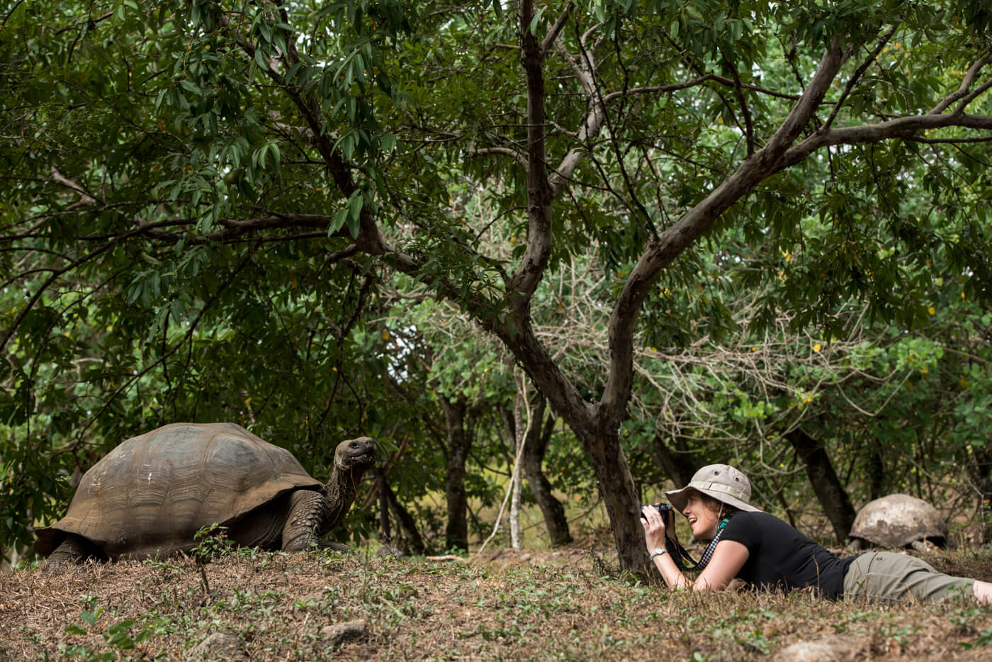 20160613_Model_with_Galapagos_Giant_Tortoise_386-web.jpg