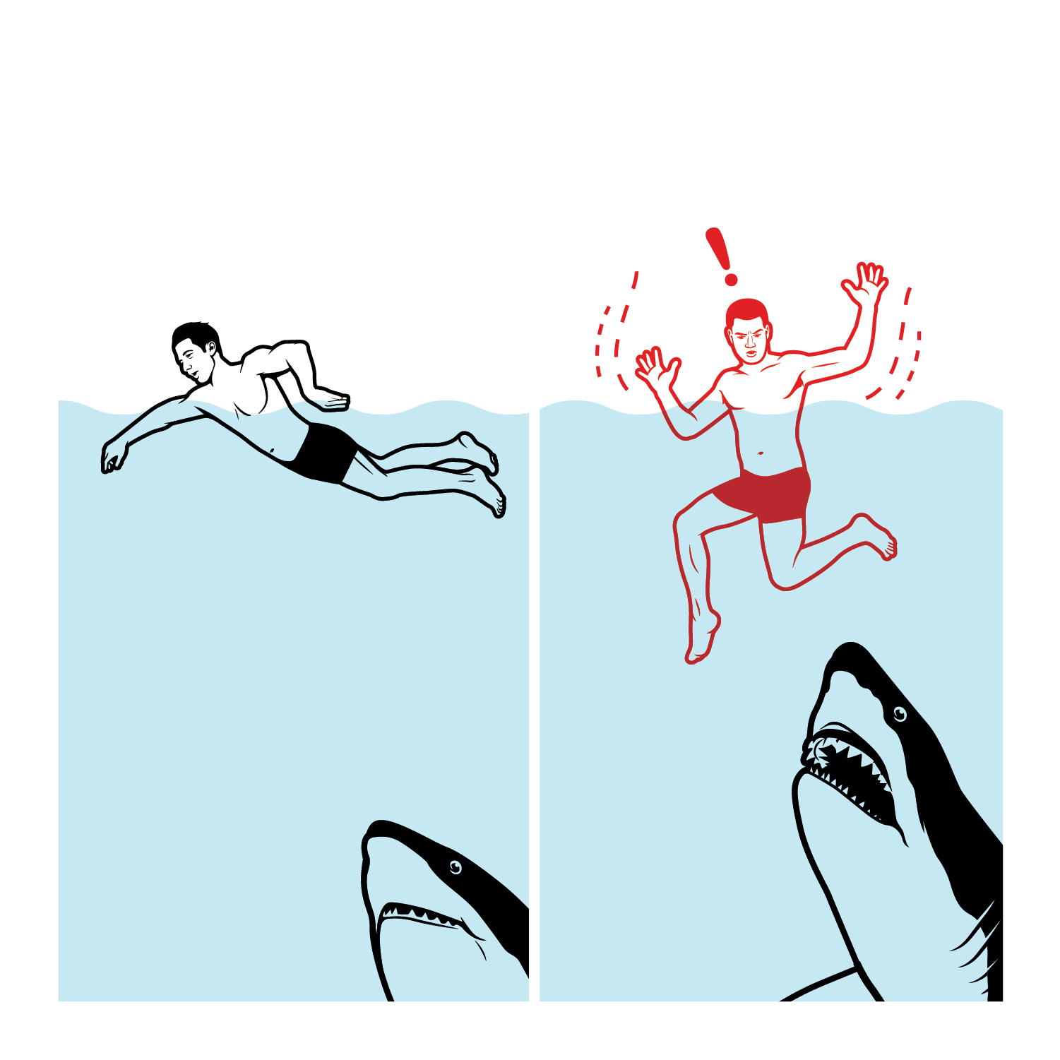 Discovery_Shark_Attack__TMD-01.png