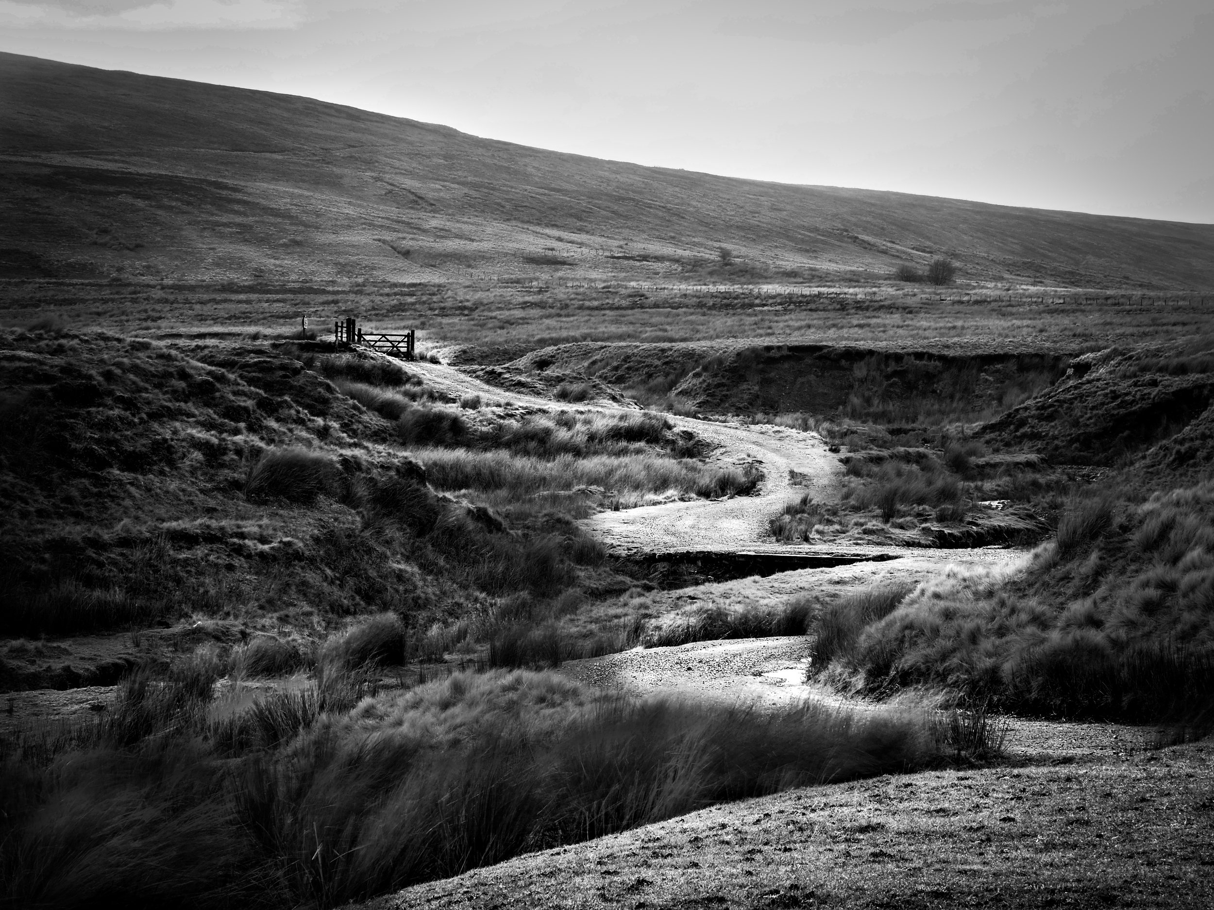 Trough of Bowland hill path   1/6th of a second in strong winds
