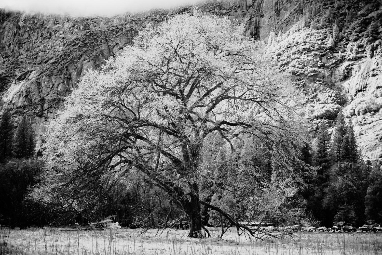 atlanta commerical photographer travel photography california 1018.jpg