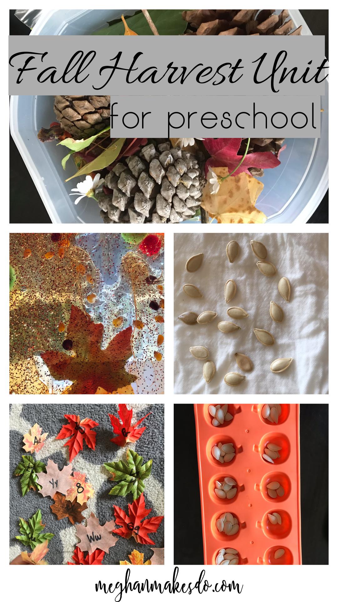 Fall Harvest Preschool.jpg