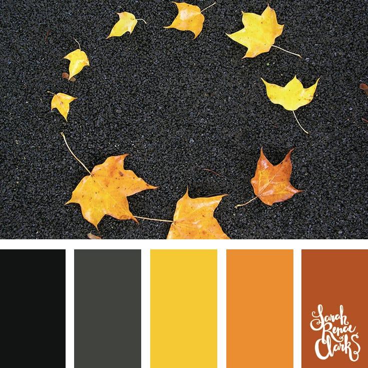 Color-palette-137-leaves.jpg