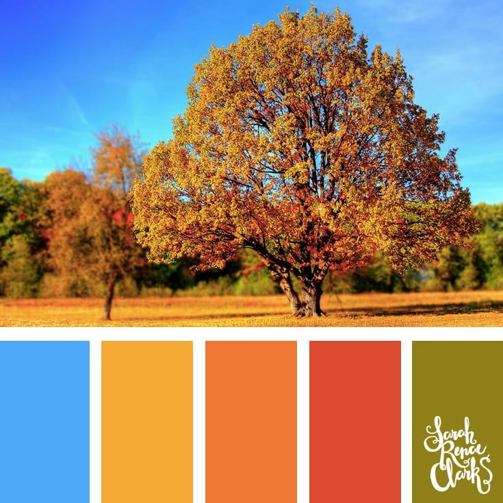 Color-palette-127-autumn.jpg