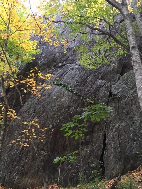 Asheville hike 16.JPG