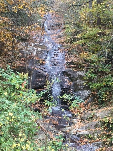 Asheville hike 15.JPG