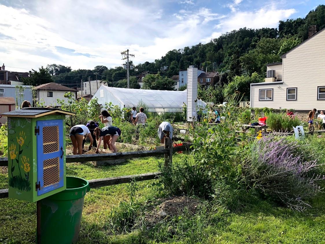 Millvale Community Garden