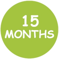 15 Month Forms