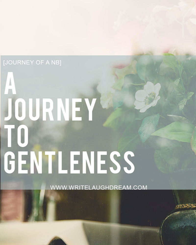 A Journey to Gentleness