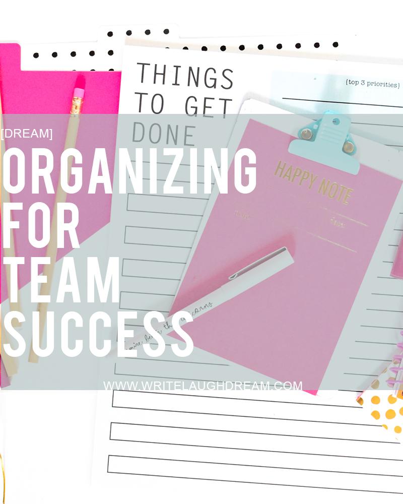 Organizing for Team Success