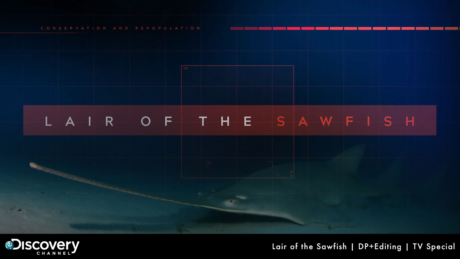 "Discovery ""Lair of the Sawfish"""