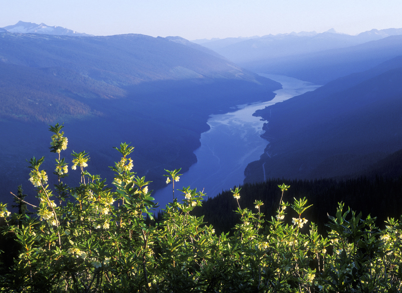 Columbia River viewpoint_Photo Rob Buchanan.jpg