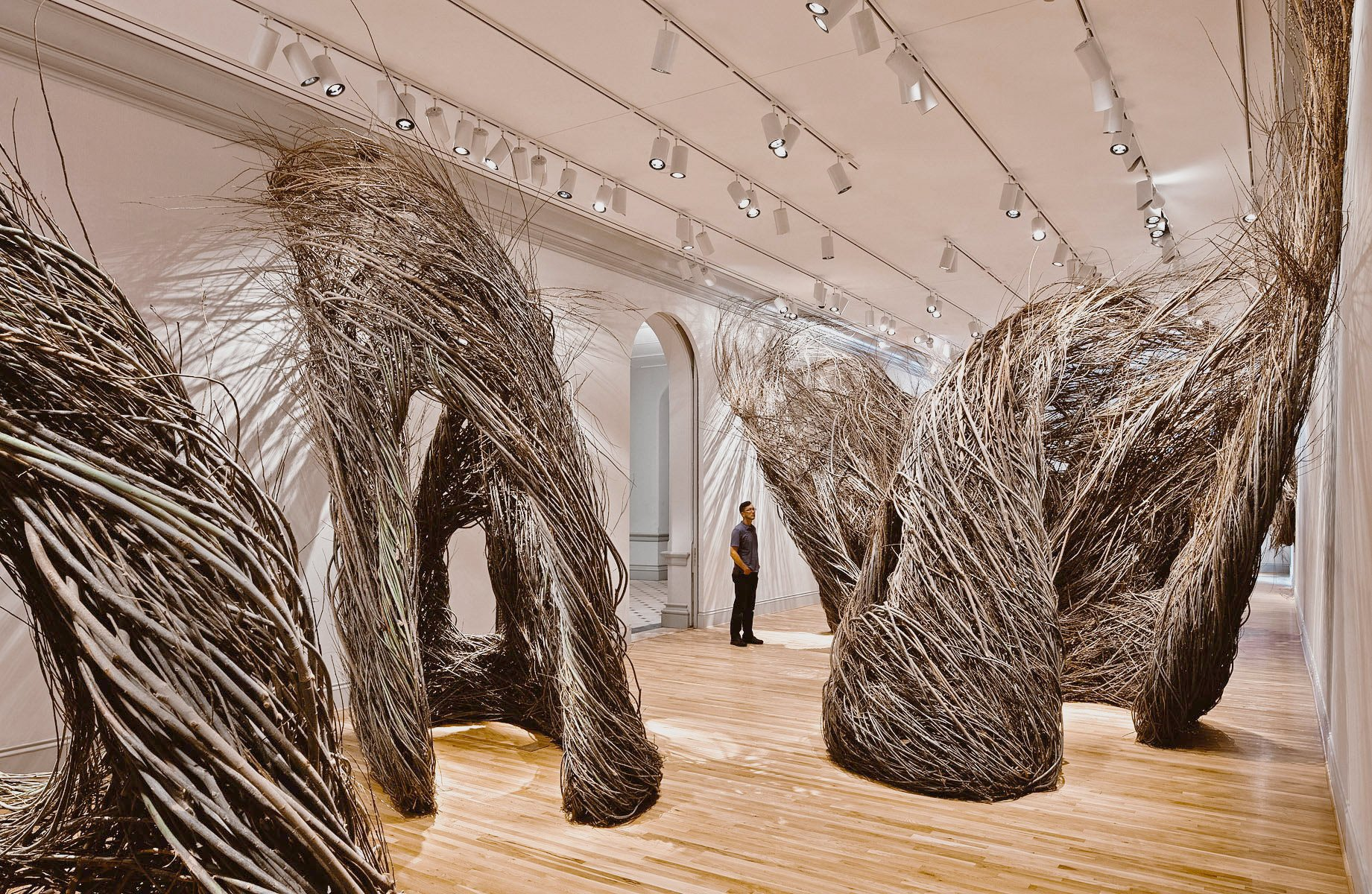 Patrick Dougherty: Shindig, exhibited at the Smithsonian (2015)