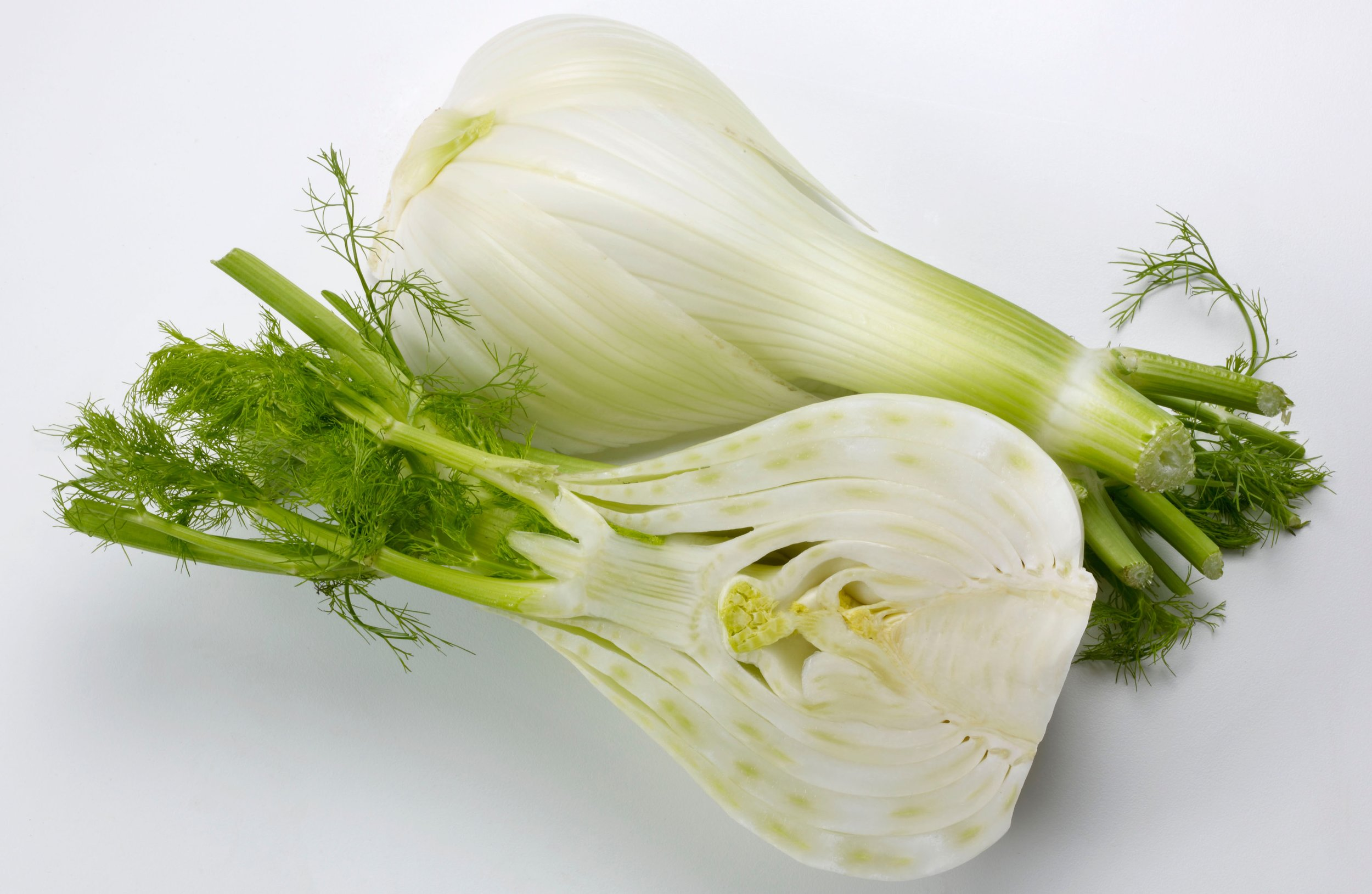 Fresh Fennel Bulb Halves