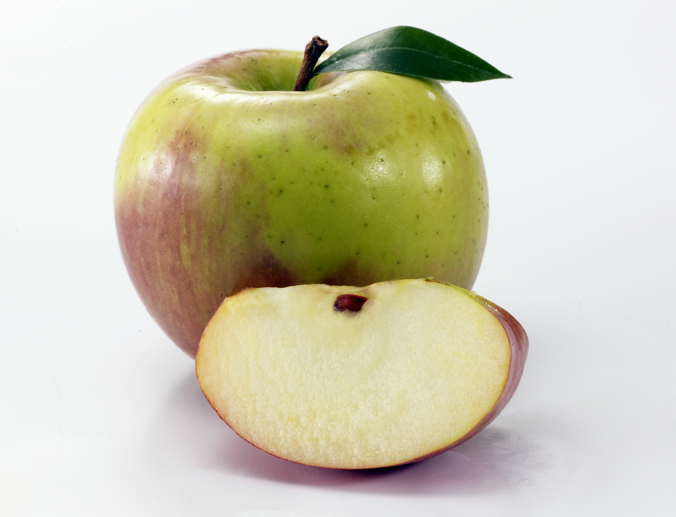 Apple and leaf smaller.jpg