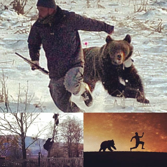 Here are 3 examples of what NOT to do in a wildlife encounter.  Come join us @whistlingandy on Saturday at 4pm to learn from an expert.  Oh.  And we make Whiskey!