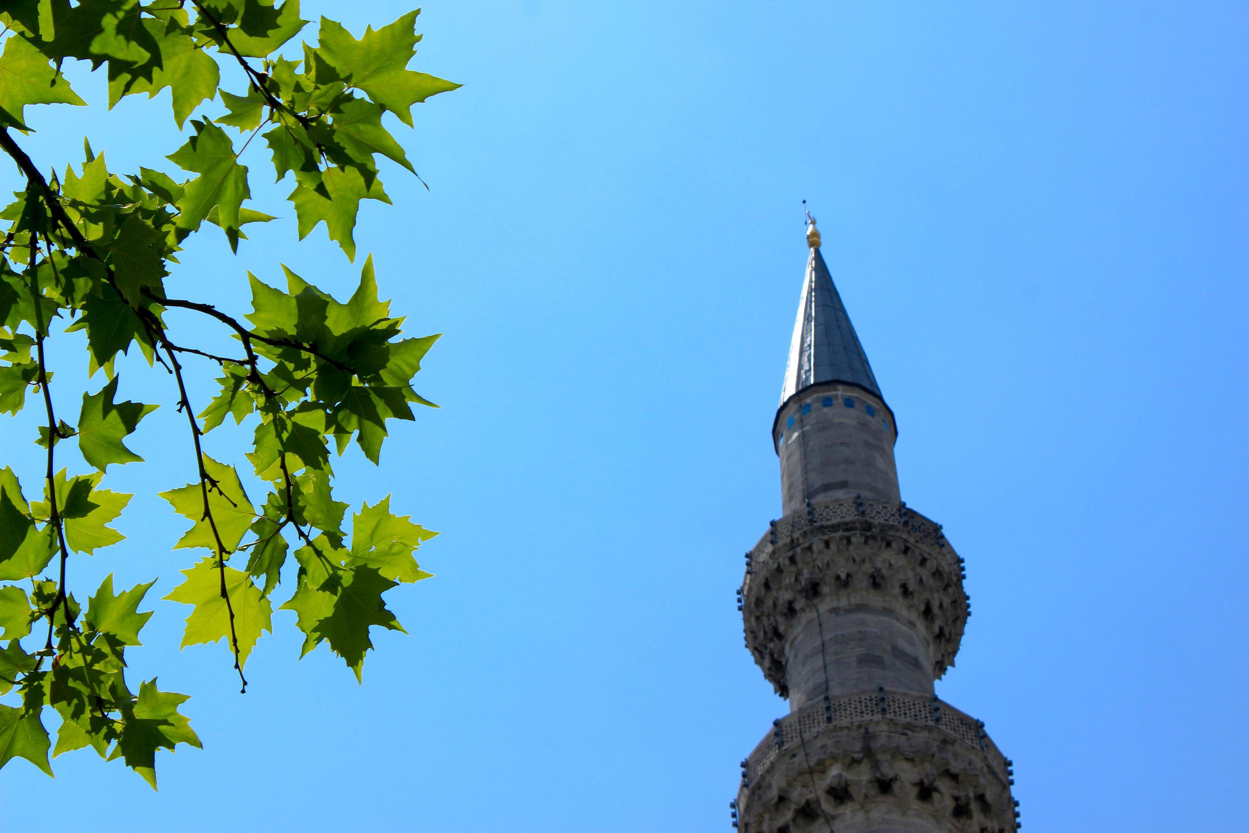 Minaret 2.jpg