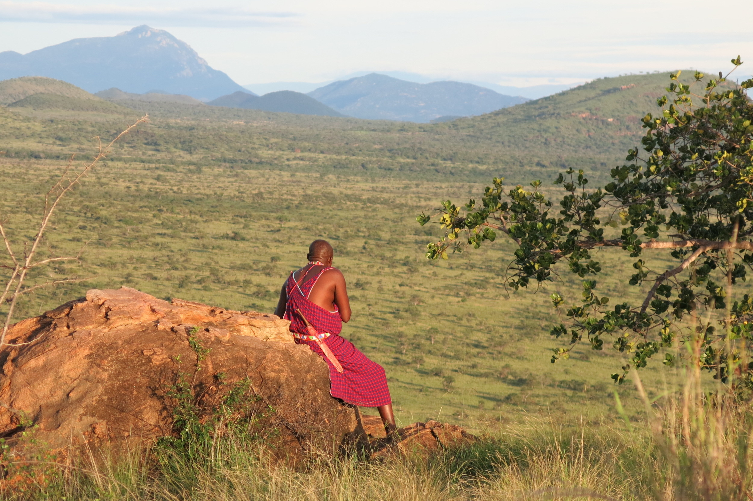 Pashiet, a Maasai warrior, sets out in the Chyulu Hills of Southern Kenya, to protect his village from a marauding lion.This land was the setting for Hemingway's  Green Hills of Africa ,at the foot of Mt. Kilimanjaro, but t his picture was taken by my friend Kira, when she visited the village in 2013. The territory is Maasai owned land in a migration corridor in between Tsavo and Amboseli National Parks. Although Pashiet is a village elder, it is considered a rite of passage for young men to make the same journey.  Photo by Kira Siebert