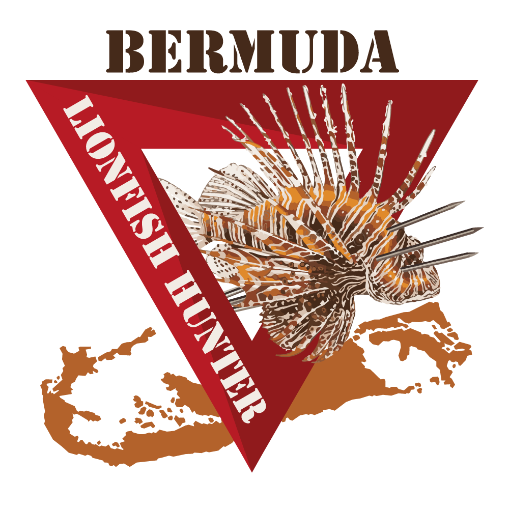 bermuda lionfish learn to hunt dive bermuda.jpg