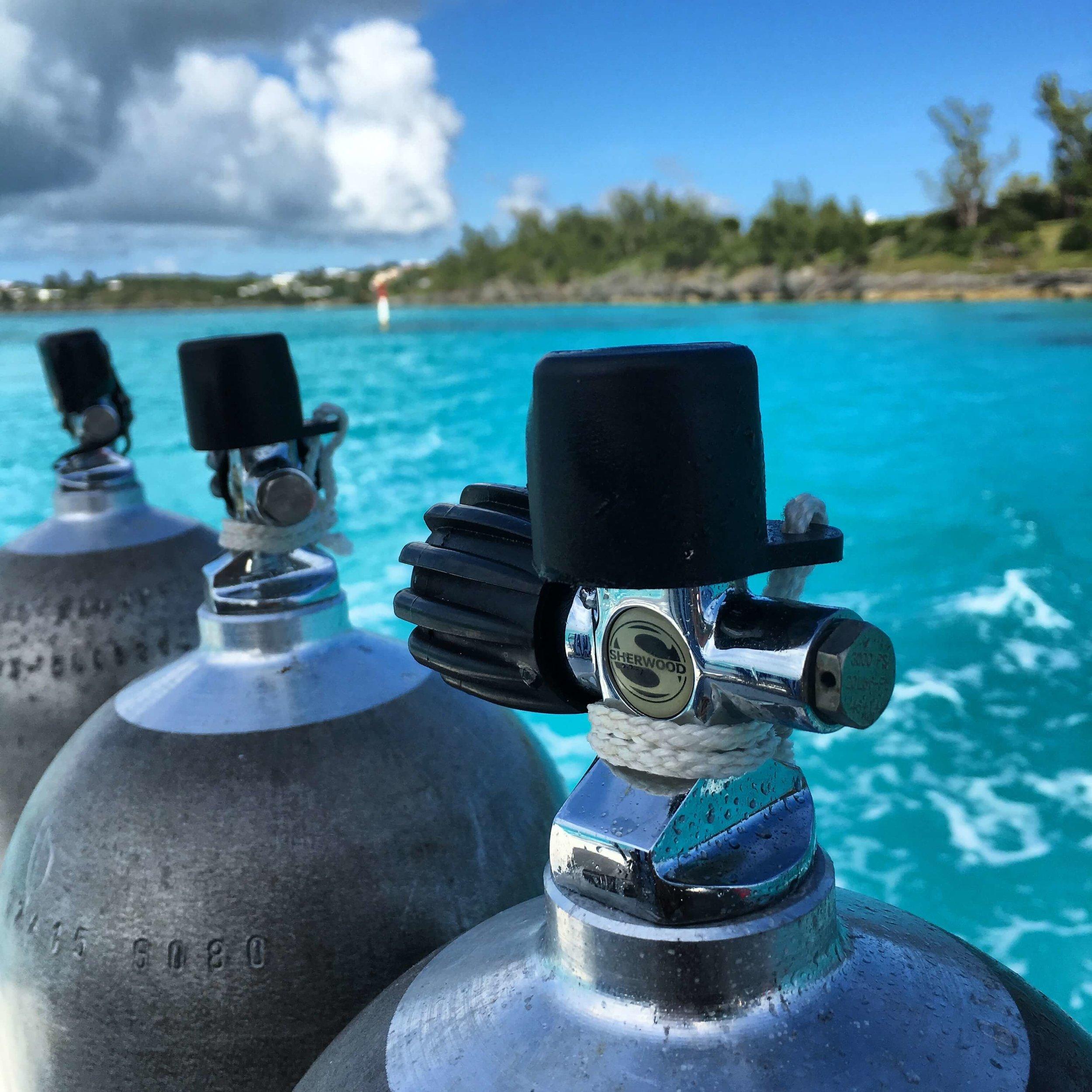 dive bermuda fairmont southampton best scuba diving PADI 5 star.jpg