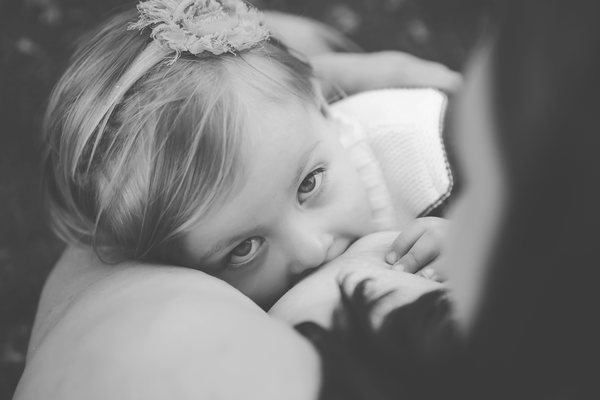 Another of my first nursling from last year  photo credit:  Jess Krcmar Photography
