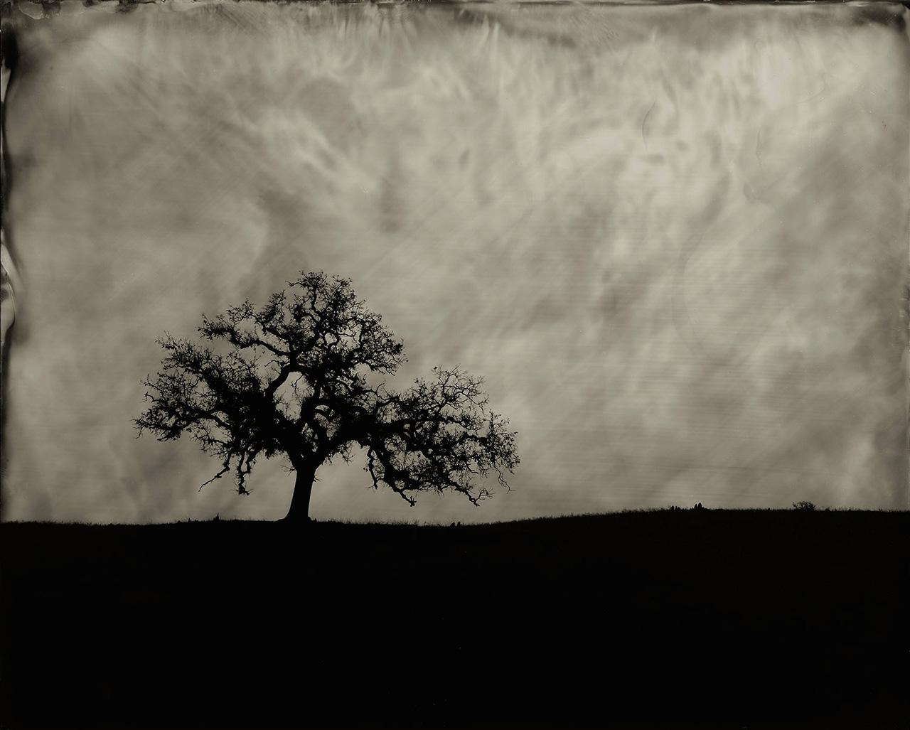 Lone Tree, Folsom