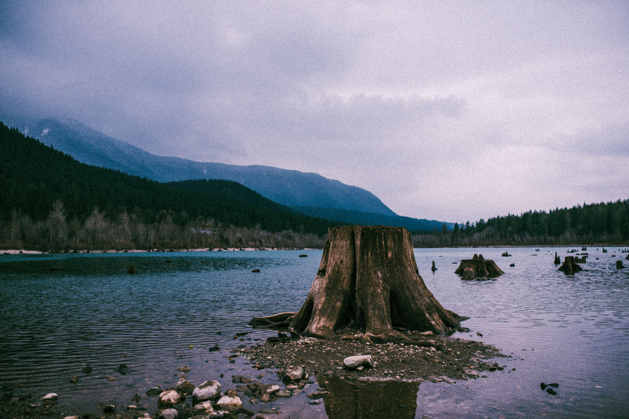 Kyle Willis Rattlesnake Lake