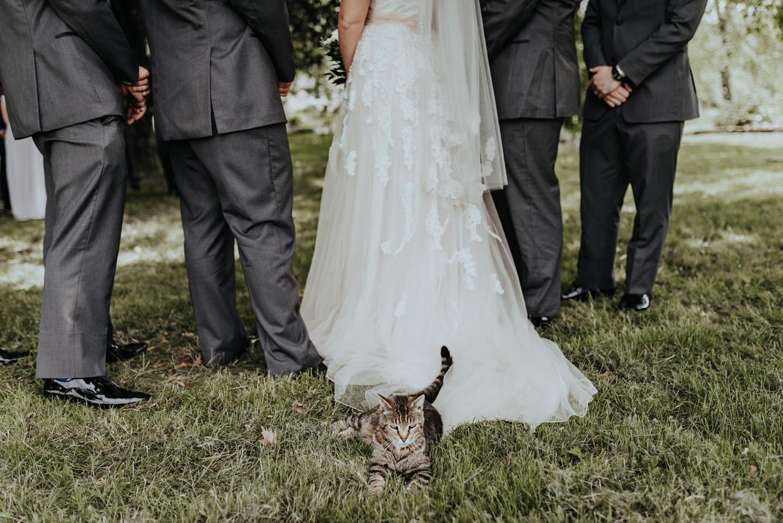 kylewillisphoto_kyle_willis_photography_rodale_institute_farm_wedding_kutztown_pennsylvania_pa_philadelphia_rustic_lavender_sendoff_exit_new_jersey_marriage_engagement_york_city_moody328.jpg